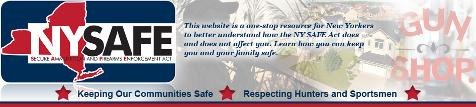 Click to visit NY's interactive website